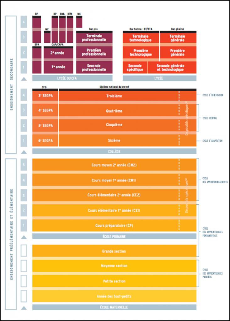 Figure 3 : Extrait du schéma graphique représentant les différents niveaux de l'enseignement primaire et secondaire